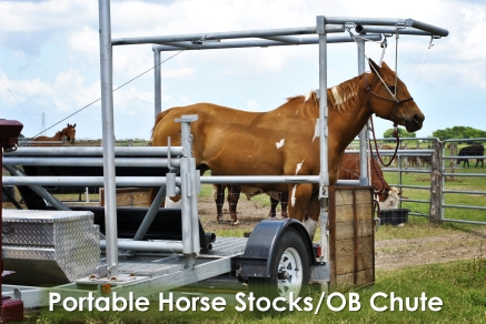 Hand-built by me, Dr. Hanselman, these stocks are customized to hold both horses for any routine care and cows that may need a C-section.